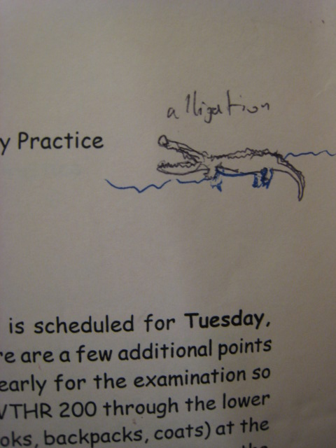 the alligation alligator